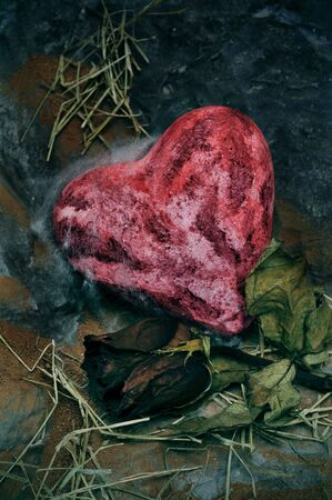 dismal: closeup of a bloody heart an a dry rose on a dismal scenery