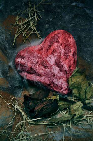 flores secas: Primer plano de un corazón sangriento un seco una rosa en un paisaje sombrío Foto de archivo