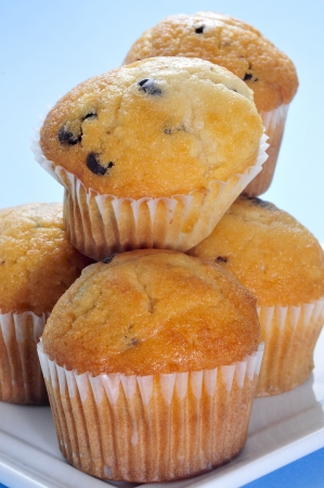 madalena: closeup of a plate with some chocolate chips muffins on a blue background Stock Photo
