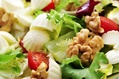 closeup of a plate with salad made with lettuce, tomato, cheese, olives, tuna and walnuts Stock Photo - 15727051