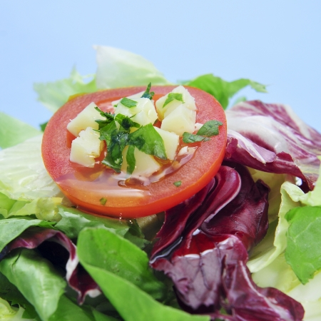 cornsalad: closeup of a plate with garden salad with tomato and cheese