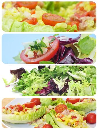 a collage of different plates of salads Stock Photo - 15989433