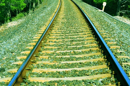 railway engine: closeup of a railway track passing through the woods Stock Photo