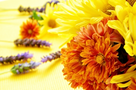 closeup of a bunch of different flowers, such as gerbera daisies and lavender photo