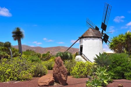 antigua: old windmill in Antigua, Fuerteventura, Canary Islands, Spain