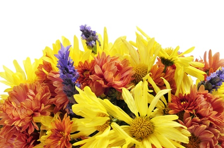 closeup of a flower arrangement with different flowers, such as gerbera daisies and lavender photo