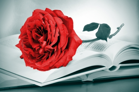 a red rose and some books, a catalan tradition for the roses day, on april 23th, saint george day photo