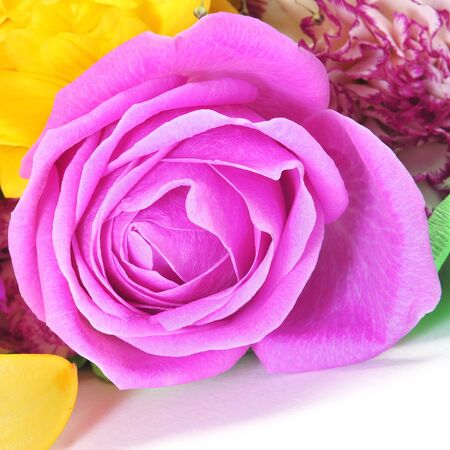 purple rose: closeup of a flower bouquet with roses and carnations