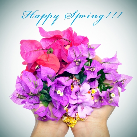 hands full of flowers, as verbenas, bougainvillea and violets, and the sentence happy spring Stock Photo - 17681702