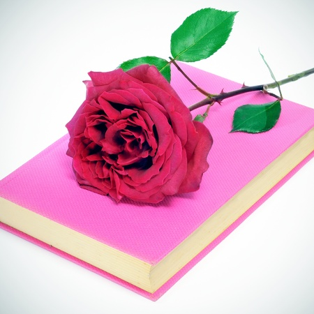 sant: a red rose and a pink book