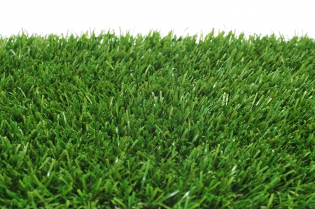 pasto sintetico: primer plano de hierba sobre un fondo blanco
