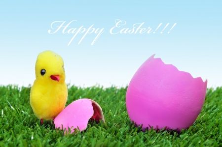 sentence happy easter and a teddy chick emerged from a hatched pink easter egg on the grass photo