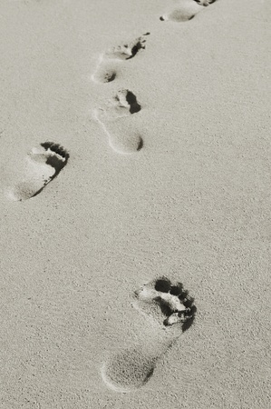 vacationers: footprints in the sand of a beach