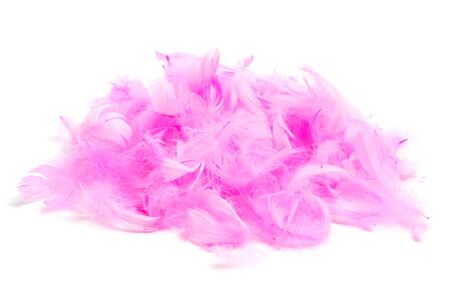 silken: a pile of soft pink feathers on a white background