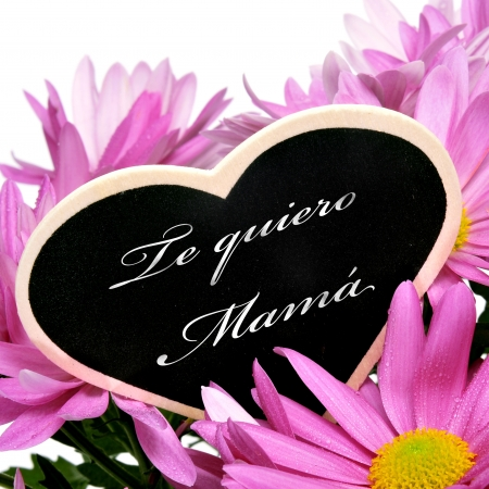thankfulness: sentence te quiero mama, I love you mom in spanish, written with chalk on a heart-shaped blackboard on a bouquet of pink chrysanthemums