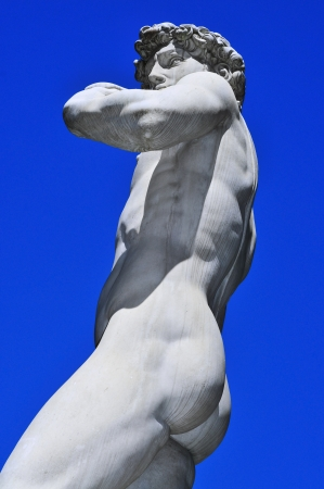 A side view of the replica of the David by Michelangelo located in Piazza della Signoria in Florence, Italy photo
