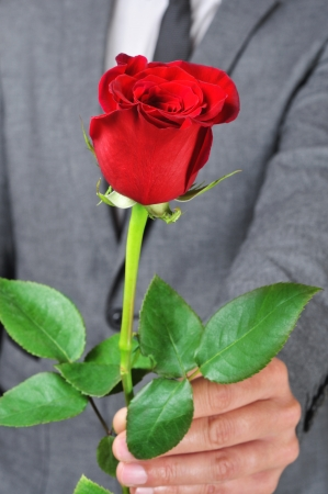 a man in suite offering a red rose to someone photo