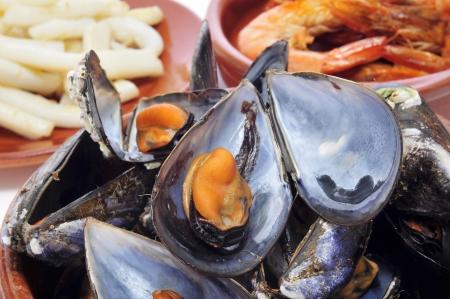 tapas españolas: primer plano de las tapas españolas mariscos, como mejillones al vapor al vapor los mejillones, gambas al ajillo gambas con ajo o calamares calamares