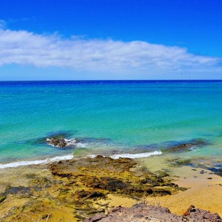 view of Sotavento Beach in Fuerteventura, Spain photo