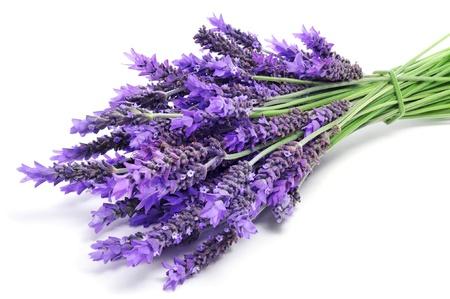 een stapel van lavendel bloemen op een witte achtergrond