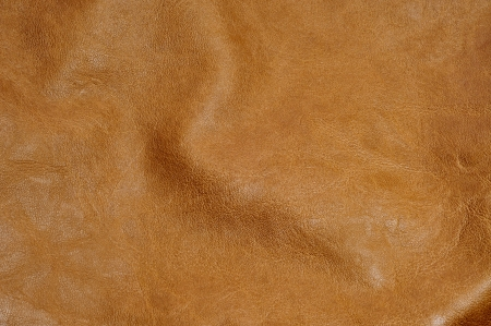 cow hide: background made of a closeup of a brown leather texture
