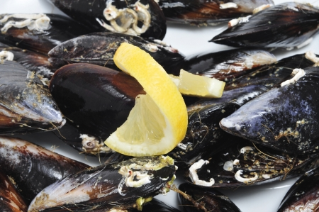frites: closeup of a plate with a pile of raw mussels with its shells Stock Photo