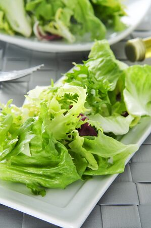 cornsalad: closeup of a plate with mesclun, a mix of assorted salad leaves