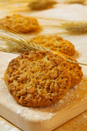 flak: closeup of some bran flake cookies and some wheat ears