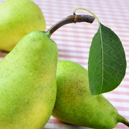 closeup of some appetizing and fresh pears photo