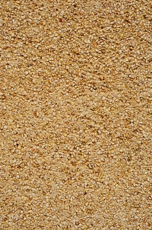 background made of a closeup of a wall with a dry dash aggregates coating