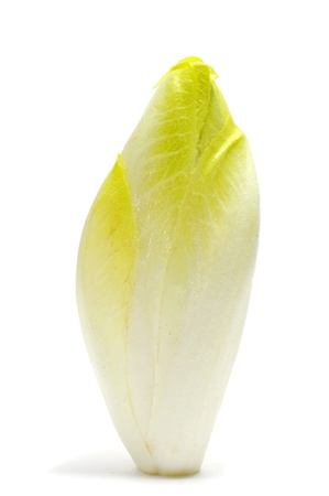endive: head of belgian endive on a white background  Stock Photo