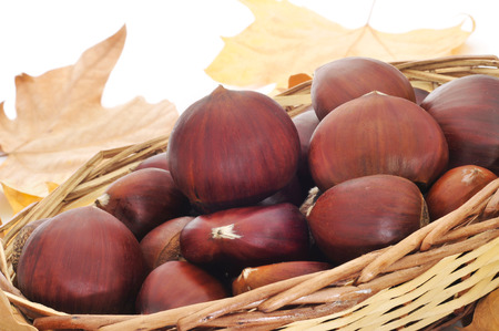 tots: a pile of chestnuts on a basket and autumn leaves in the background