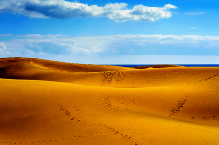 a view of the Natural Reserve of Dunes of Maspalomas, in Gran Canaria, Canary Islands, Spain Stock Photo - 23125922