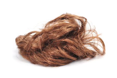 a brunette hairpiece on a white background 免版税图像
