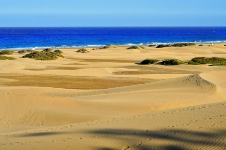 a view of the Natural Reserve of Dunes of Maspalomas, in Gran Canaria, Canary Islands, Spain Stock Photo - 24064677