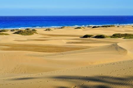 gran canaria: een uitzicht op het natuurreservaat van Duinen van Maspalomas, op Gran Canaria, Canarische Eilanden, Spanje