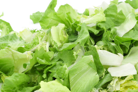 cornsalad: closeup of a pile of mesclun, a mix of assorted salad leaves, on a white background