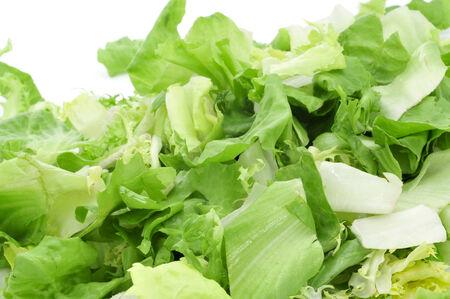 endivia: detalle de un montón de mezclum, una mezcla de ensalada variada deja, sobre un fondo blanco