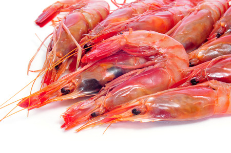 deepsea: closeup of a pile of fresh raw shrimps on a white background