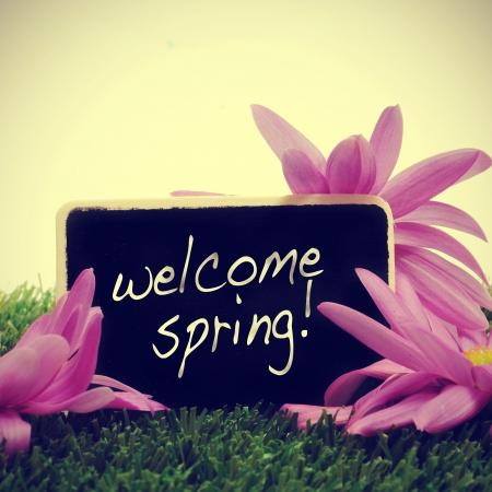 레트로 효과로 작성된 문장을 환영 봄과 잔디와 칠판에 몇 가지 꽃