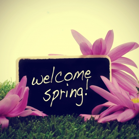 some flowers on the grass and a blackboard with the sentence welcome spring written in it, with a retro effect photo