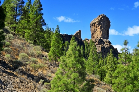 gran canaria: a view of Roque Nublo monolith in Gran Canaria, Spain
