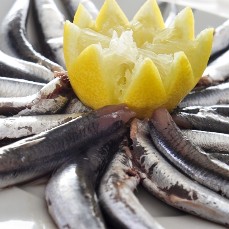 engraulis encrasicolus: a plate with some raw spanish boquerones, anchovies typical in Spain, ready to be cooked Stock Photo