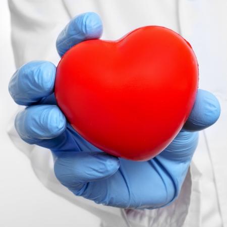 enfermedades del corazon: alguien que llevaba una bata blanca y azul guantes médicos mostrando un corazón rojo