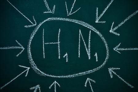 h1n1 vaccinations: H1N1 written in a chalkboard referring to influenza A virus Stock Photo