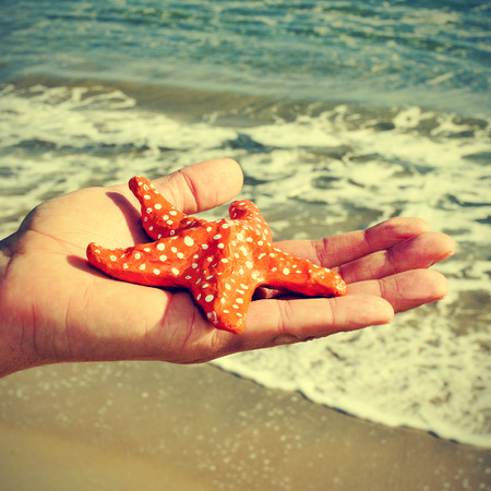papiermache: picture of someone holding a papier-mache starfish with the ocean in the background, with a retro effect