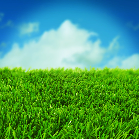 closeup of grass over the blue sky with a retro effect photo