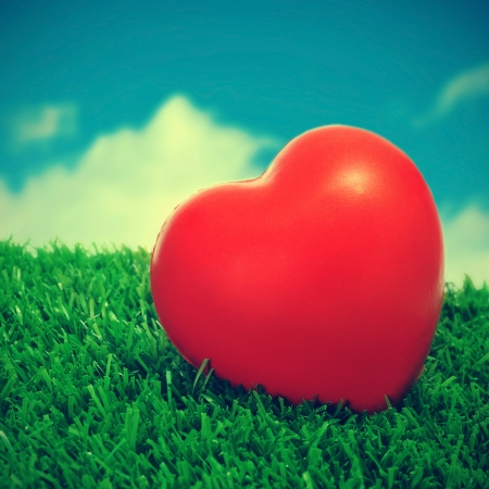 picture of a red heart on the grass with a retro effect photo