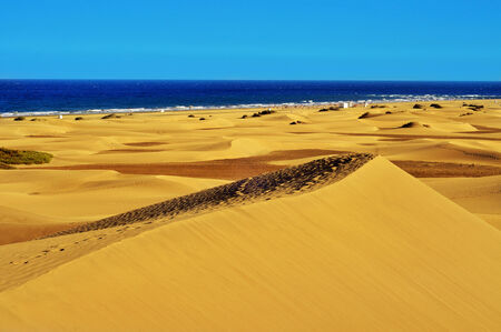 canaria: a view of the Natural Reserve of Dunes of Maspalomas, in Gran Canaria, Canary Islands, Spain Stock Photo