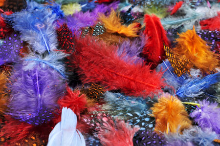 carnivale: closeup of a pile of feathers of different colors